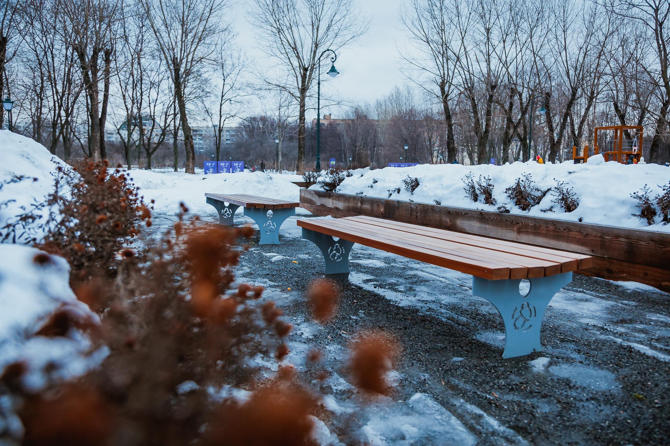 Сиреневый сад зимой