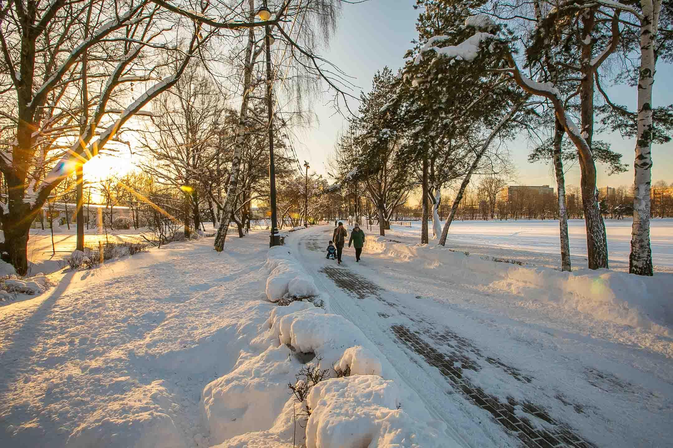 Измайловский парк культуры и отдыха зимой