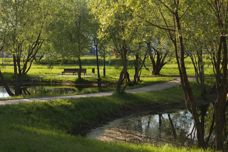 Пруды в парке 60-летия Октября