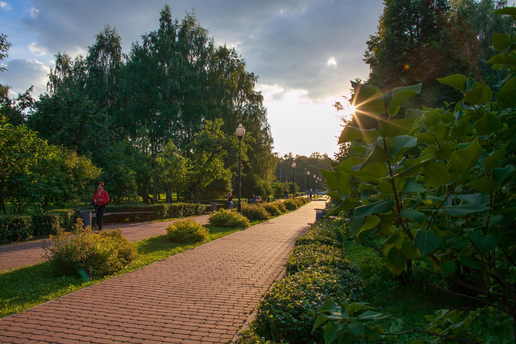 Сад будущего летом