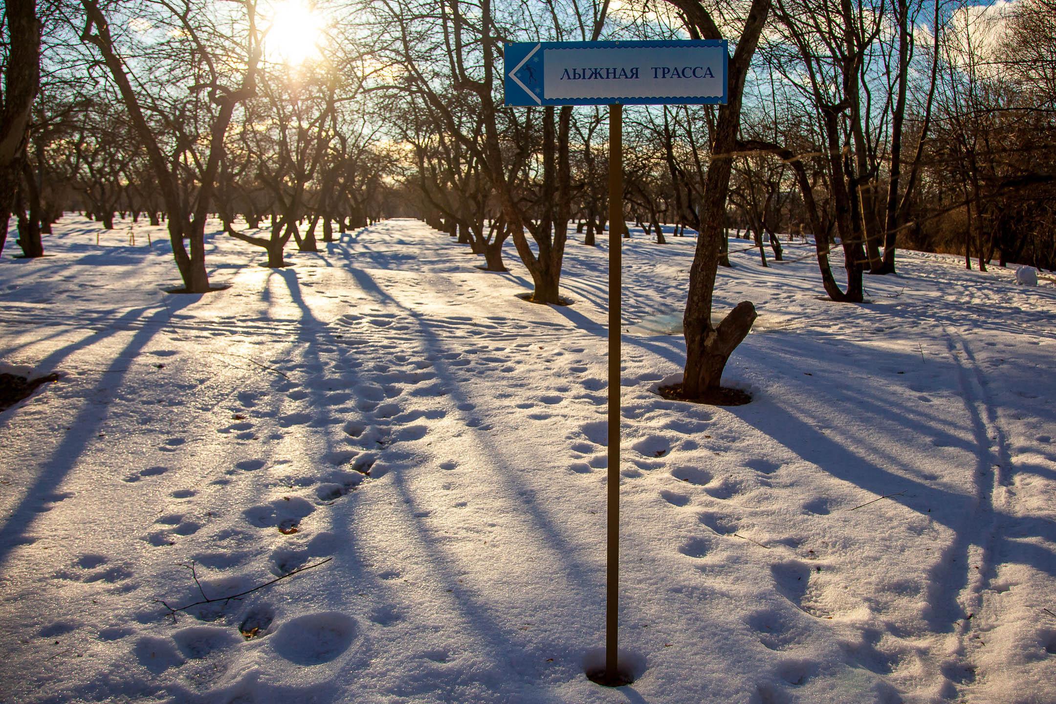 Лыжная трасса в «Коломенском»
