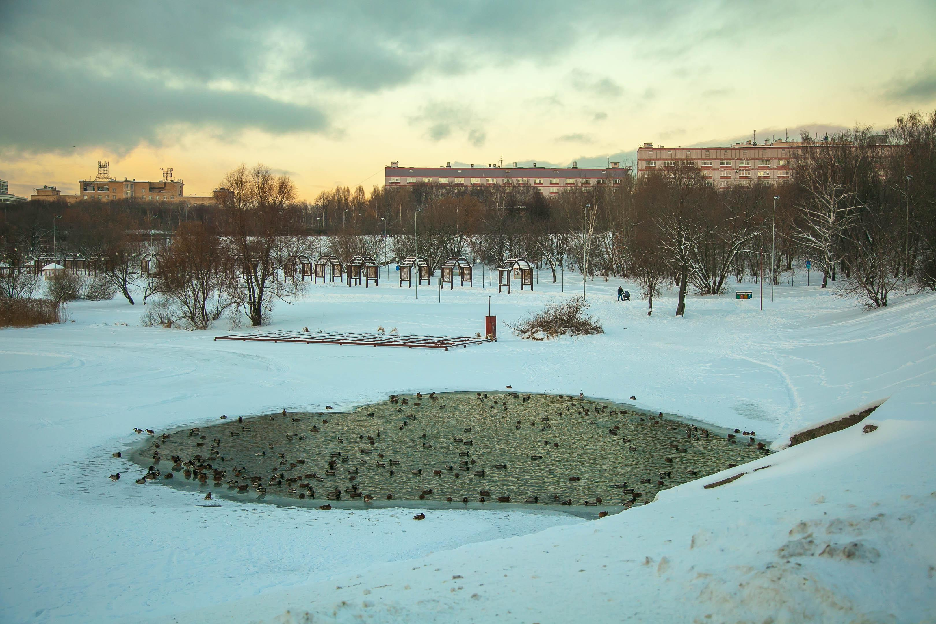 Усадьба Люблино зимой