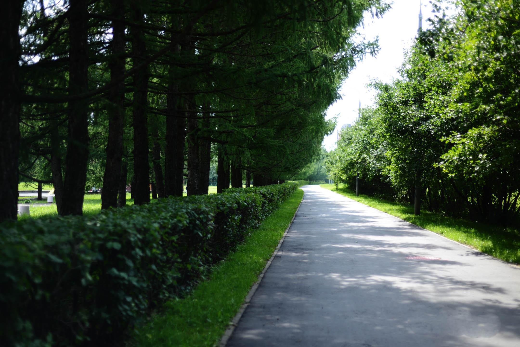 Парк 50-летия Октября летом