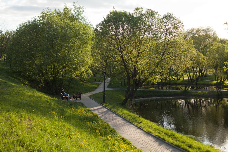 Аллея в парке 60-летия Октября