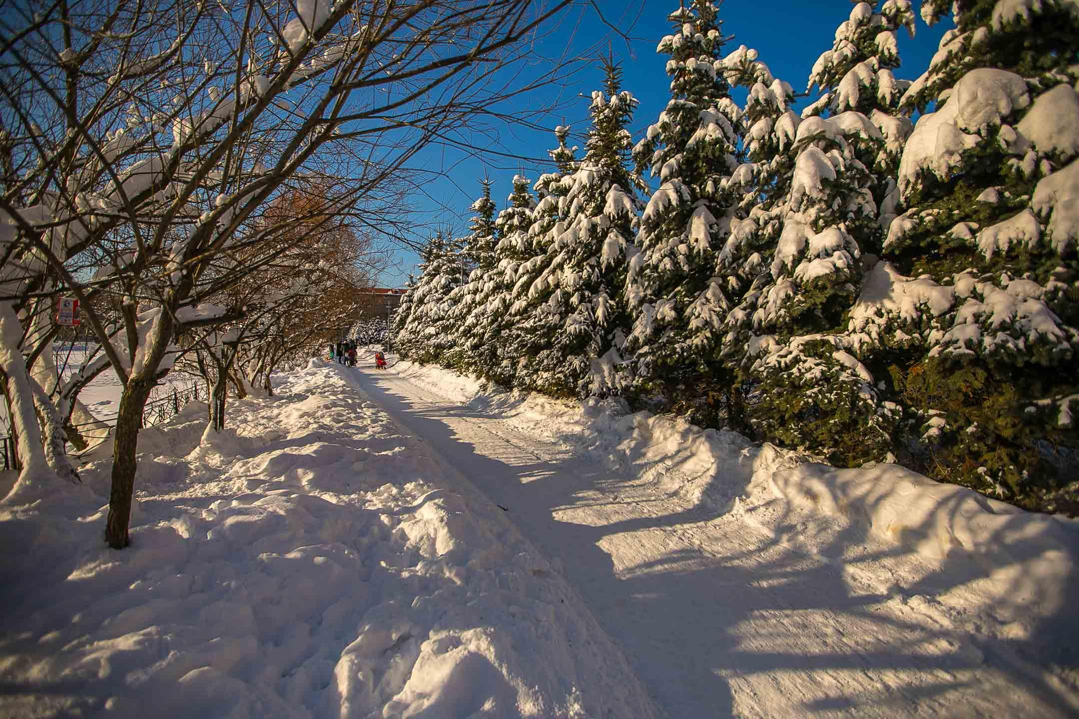Перовский парк зимой
