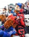 В Казани пройдет встреча с талисманами команд КХЛ