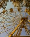 В Сормовском парке пройдет спортивный фестиваль