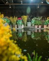 В «Аптекарском огороде» возобновляют работу тропические оранжереи