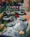 В «Царицыне» проведут Фестиваль исторических садов