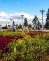 Специалисты ВДНХ разработали календарь цветения редких растений