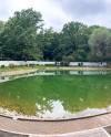 В парке «Сокольники» благоустроили Собачий пруд