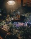 В «Аптекарском огороде» пройдут концерты в оранжереях