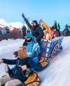 В парке Горького устроят фестиваль кастомных санок