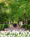 Фестиваль «Императорские сады России: Цветочная ассамблея» стартует 21 июня