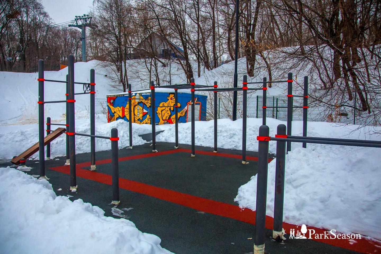 Площадка WorkOut, Воробьевы горы, Москва — ParkSeason