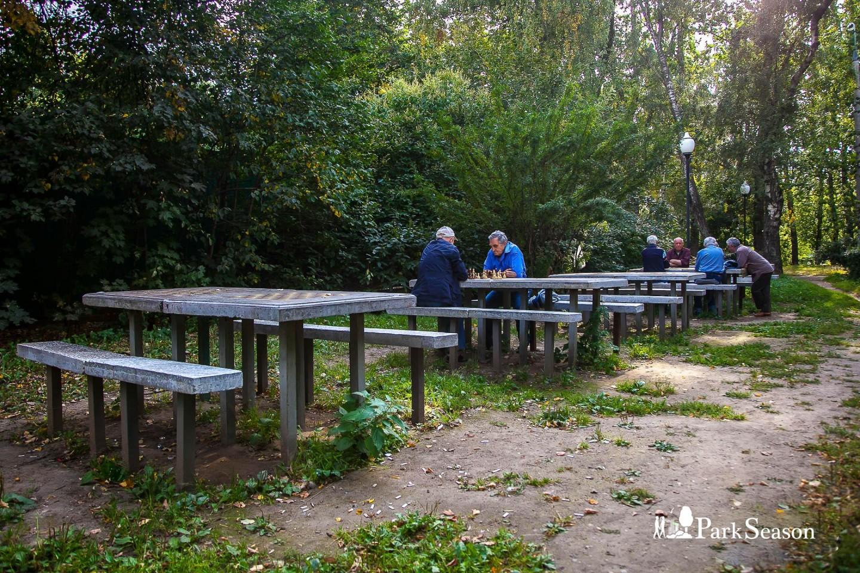 Шахматные столы , Парк «Березовая роща», Москва — ParkSeason