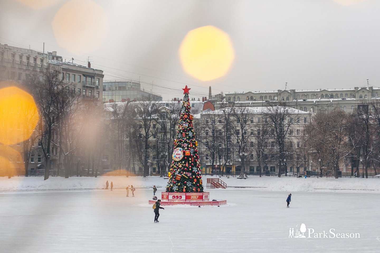 Каток на Патриарших прудах, Патриаршие пруды, Москва — ParkSeason