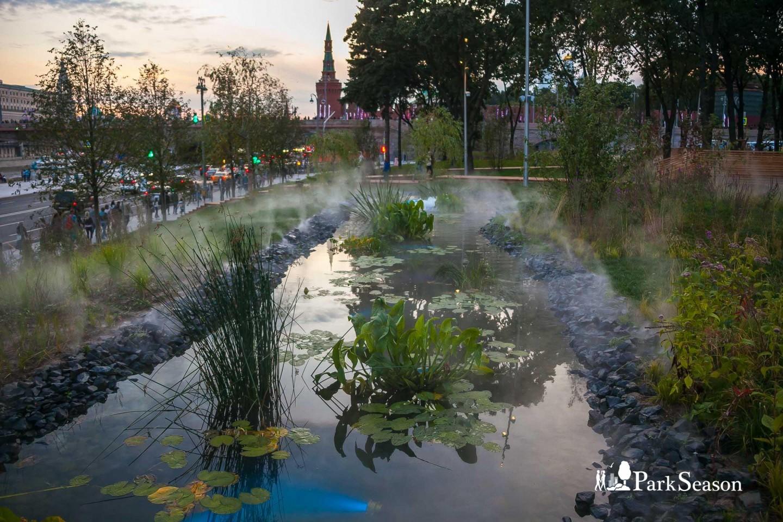 Прибрежный лес, Парк «Зарядье», Москва — ParkSeason