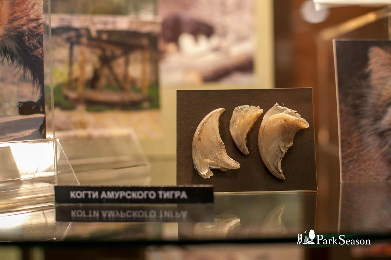 Музей истории зоопарка, Московский зоопарк, Москва — ParkSeason