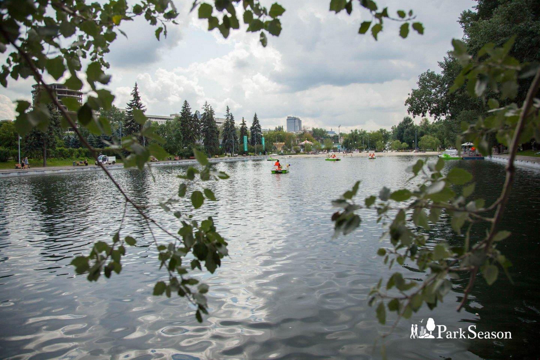 Пионерский пруд, Парк Горького, Москва — ParkSeason
