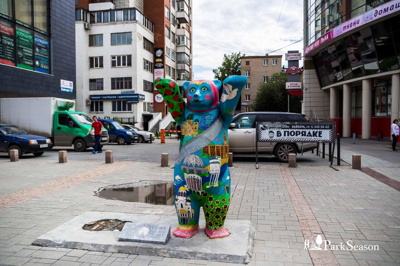Берлинский мишка — ParkSeason