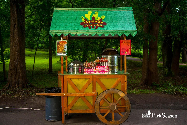 Горячая кукуруза — ParkSeason