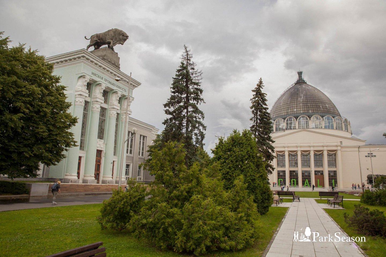 Павильон № 51: «Мясная промышленность», ВДНХ, Москва — ParkSeason