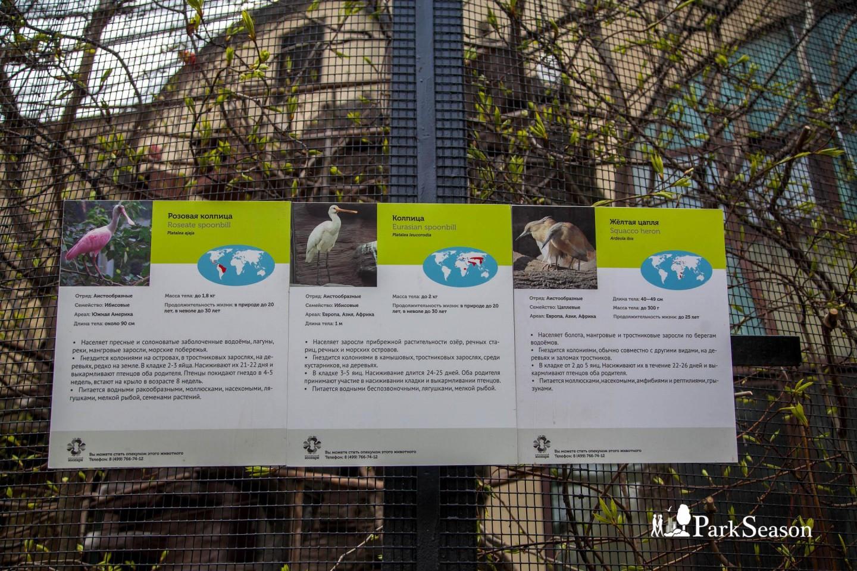 Птичник, Московский зоопарк, Москва — ParkSeason