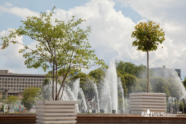 Центральный фонтан (закрыт до апреля 2019) — ParkSeason