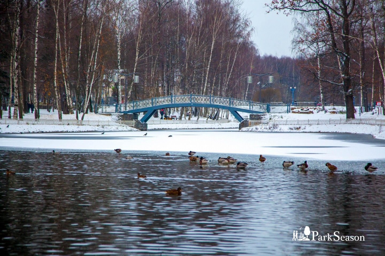 Мост влюбленных, Лианозовский парк, Москва — ParkSeason