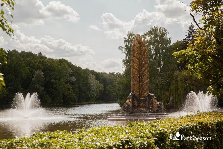 Фонтан «Колос», ВДНХ, Москва — ParkSeason