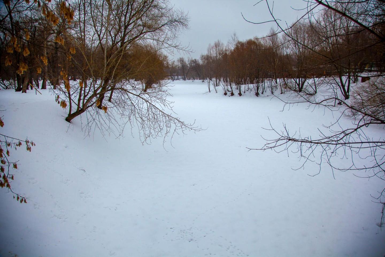 Большой Нижний пруд, Усадьба «Лефортово», Москва — ParkSeason