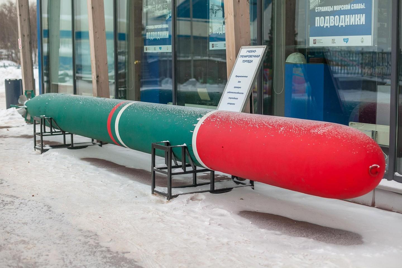 Учебно-тренировочная торпеда, Парк «Северное Тушино», Москва — ParkSeason