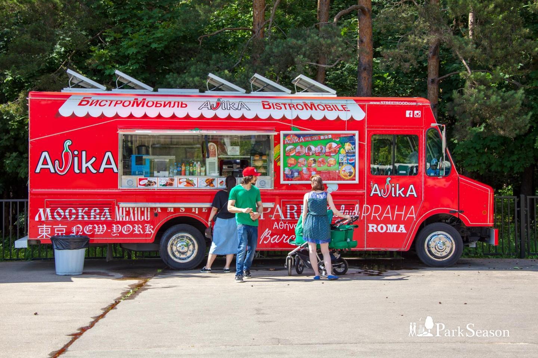Фургон Ajika, Парк «Мещерский», Москва — ParkSeason