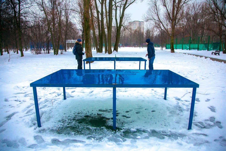 Настольный теннис, Парк «Северное Тушино», Москва — ParkSeason