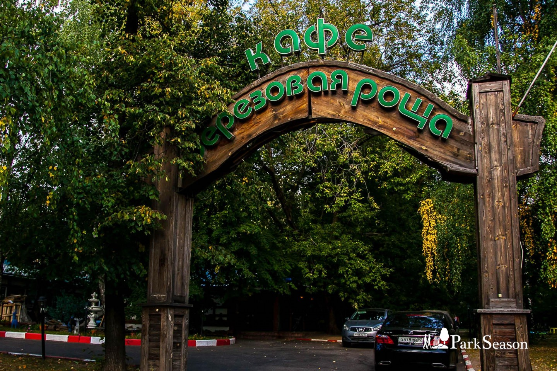Кафе «Березовая роща» , Парк «Березовая роща», Москва — ParkSeason