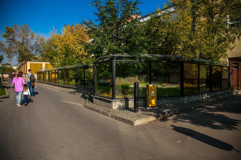 Черепахи, Московский зоопарк, Москва — ParkSeason