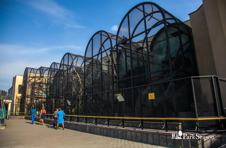 Павильон «Обезьяны», Московский зоопарк, Москва — ParkSeason