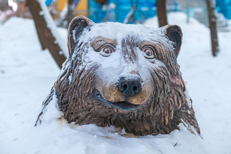 Скульптура медведя, Парк «Северное Тушино», Москва — ParkSeason