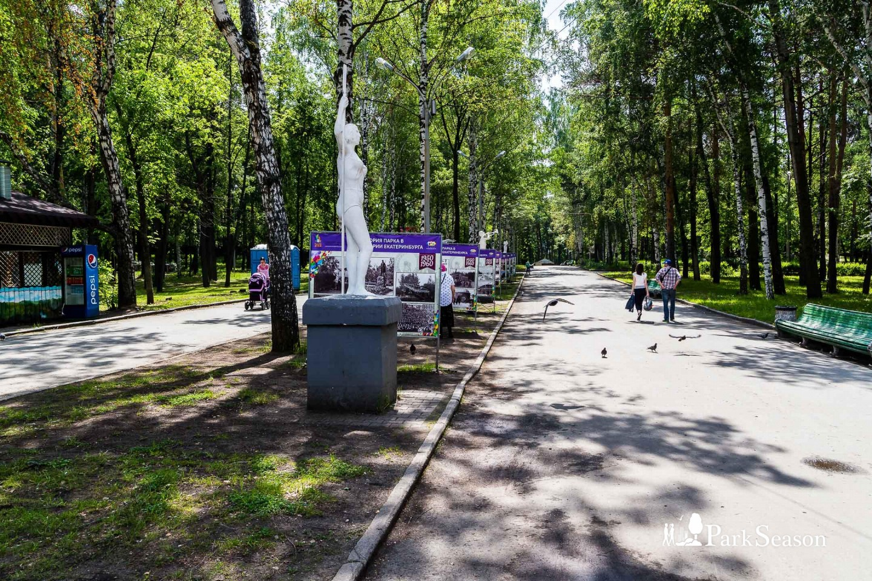 Аллея Кирова — ParkSeason