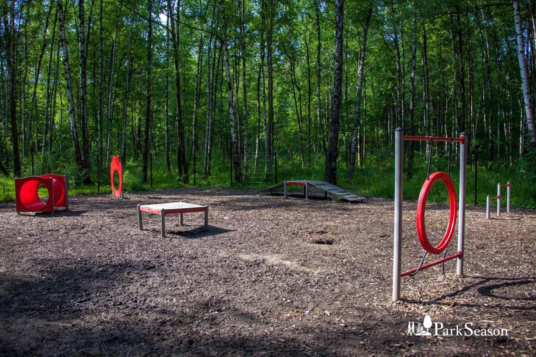 Площадка для выгула собак «Аджилити», Парк «Мещерский», Москва — ParkSeason