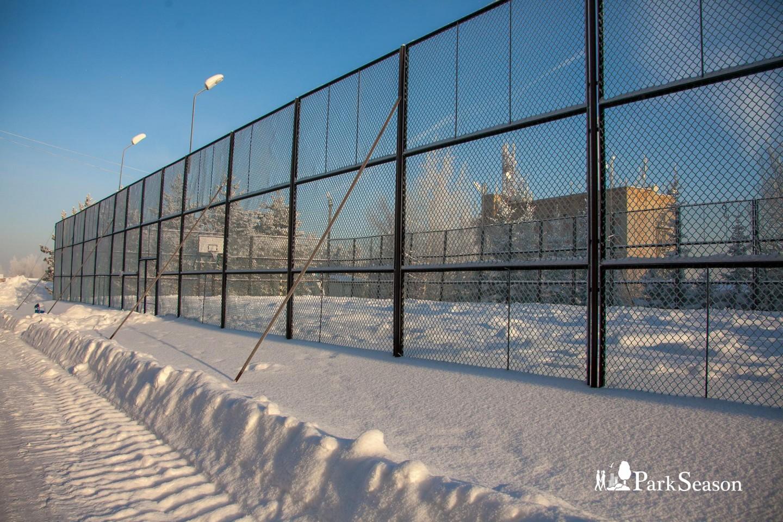Мультиспортивная площадка — ParkSeason