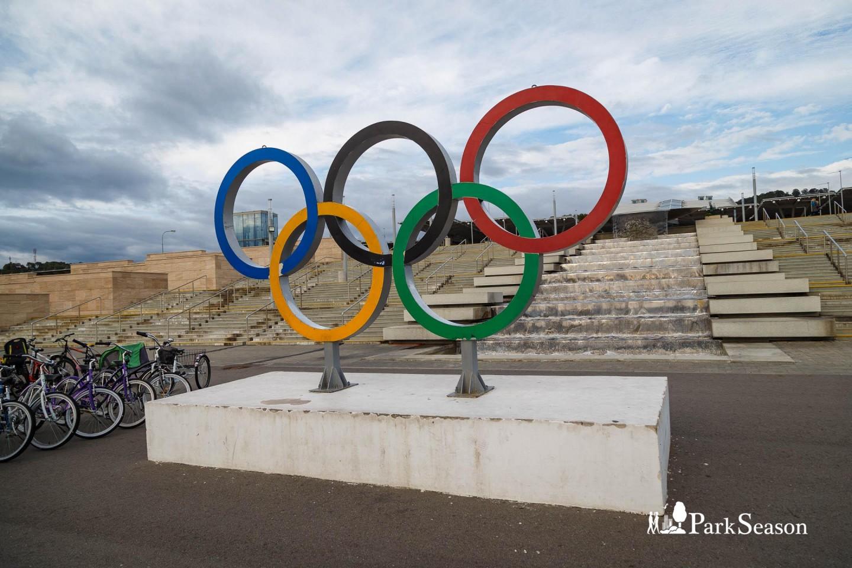 Олимпийские кольца на входе в парк — ParkSeason