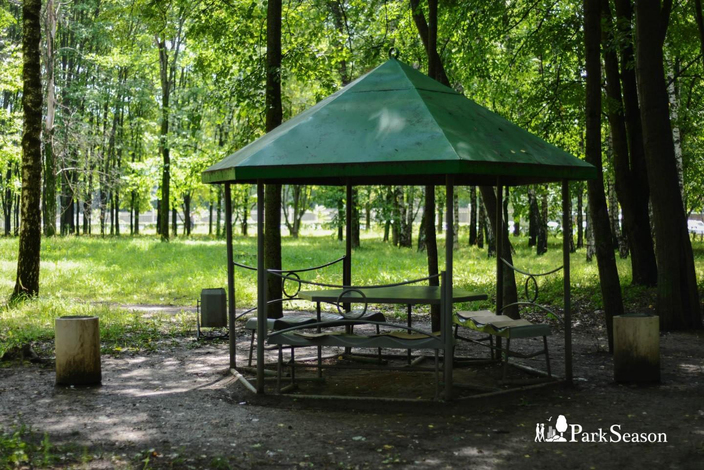 Беседки, Парк 50-летия Октября, Москва — ParkSeason