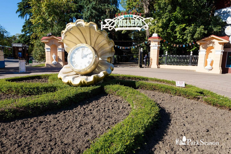Часы-ракушка — ParkSeason