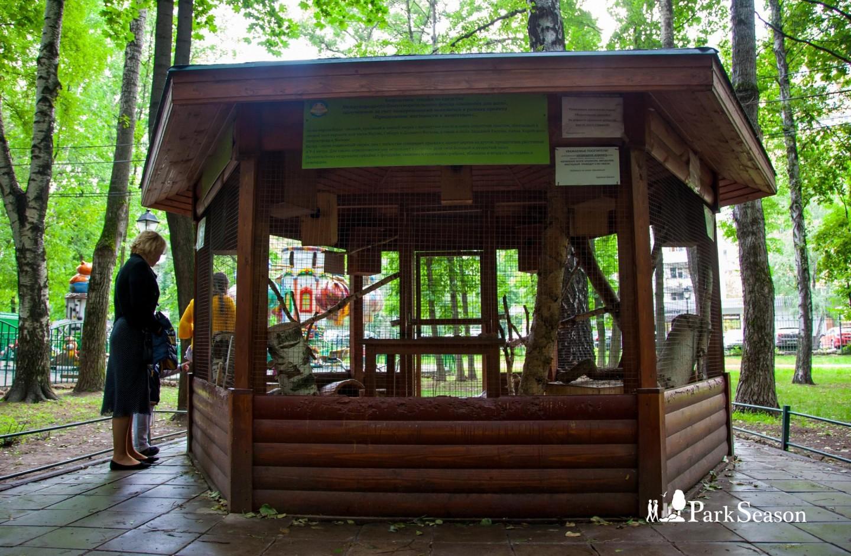 Живой уголок, Парк «Бабушкинский», Москва — ParkSeason