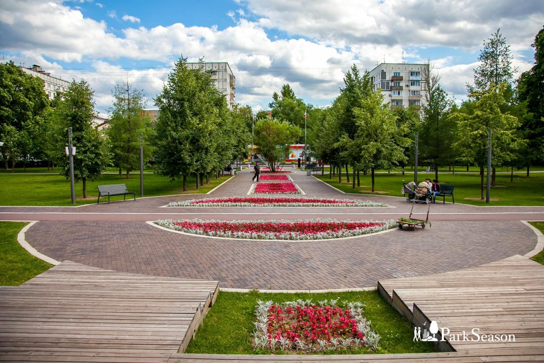 Площадка для проведения культурно-массовых мероприятий, Гончаровский парк, Москва — ParkSeason