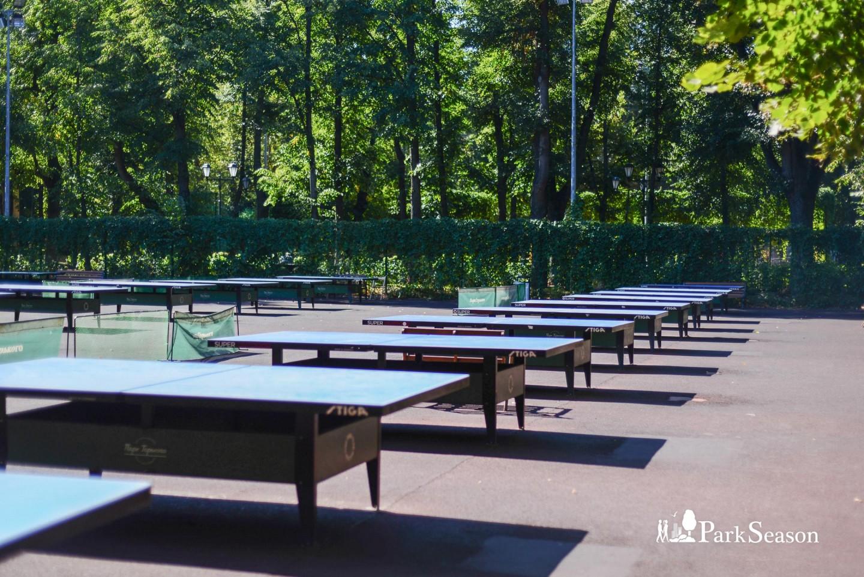 Настольный теннис, Нескучный сад, Москва — ParkSeason