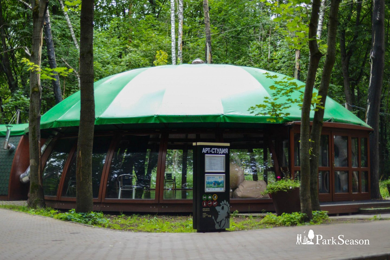 Арт-студия, Парк «Фили», Москва — ParkSeason
