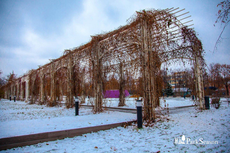 Зеленая арка, Сад им. Баумана, Москва — ParkSeason